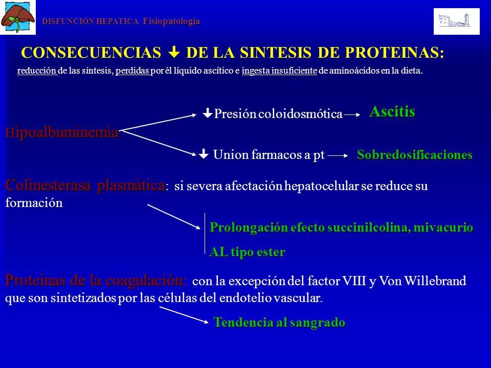 DISFUNCIÓN HEPATICA. Fisiopatología