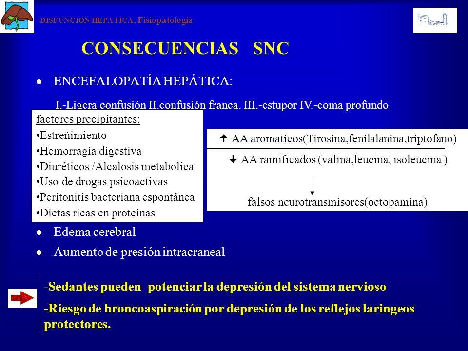 DISFUNCION HEPATICA; Fisiopatología