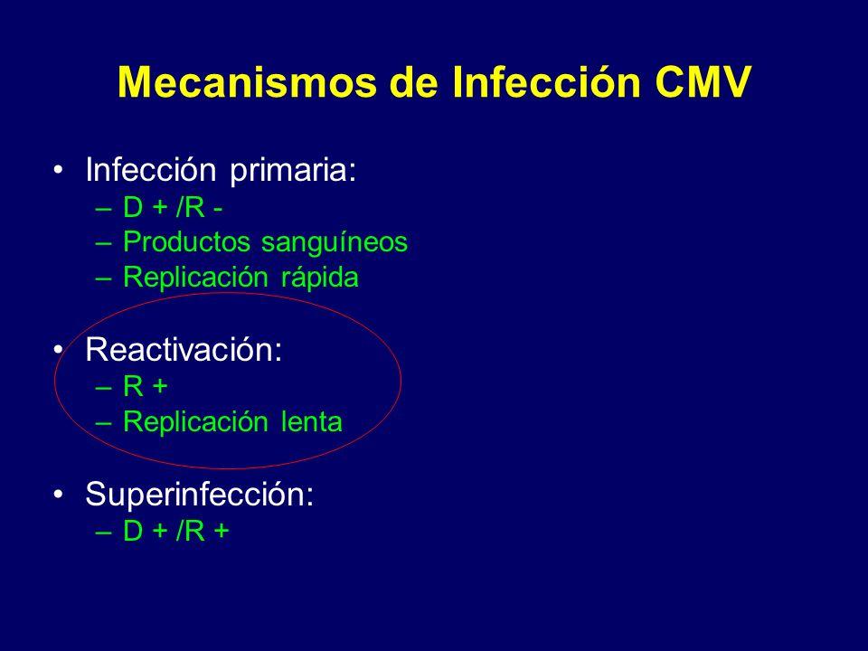 Mecanismos de Infección CMV