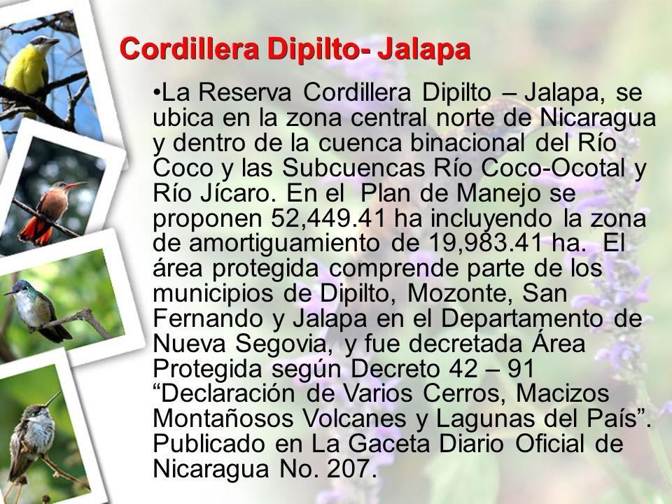 Cordillera Dipilto- Jalapa