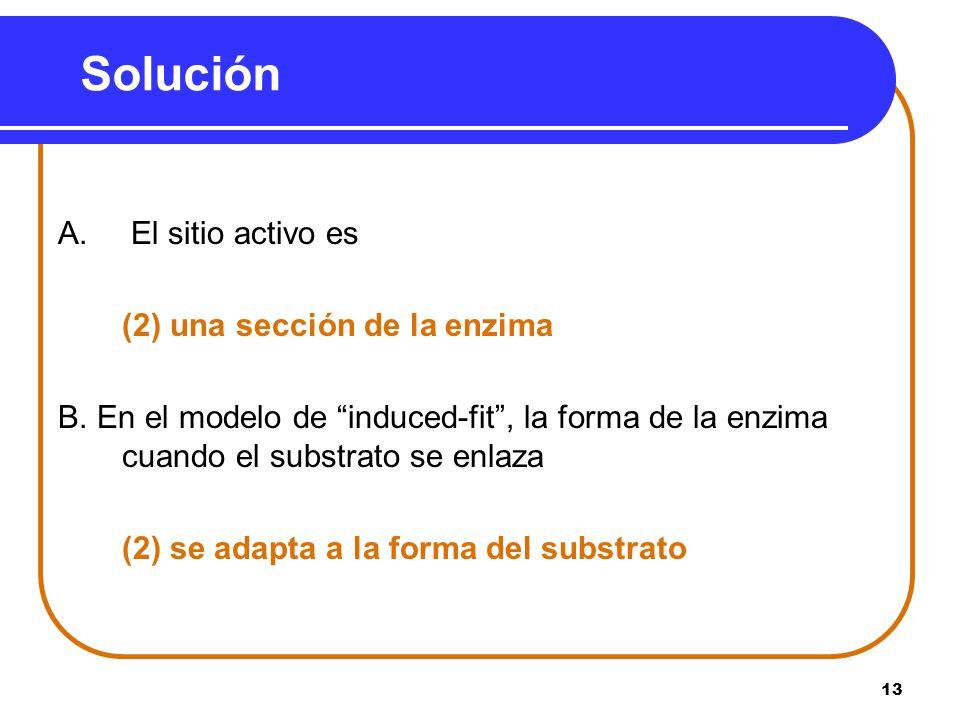 Solución A. El sitio activo es (2) una sección de la enzima