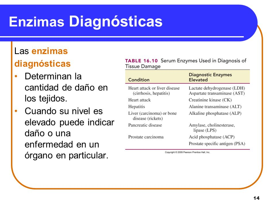 Enzimas Diagnósticas Las enzimas diagnósticas