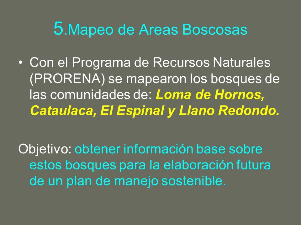 5.Mapeo de Areas Boscosas