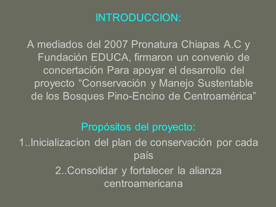 Propósitos del proyecto: