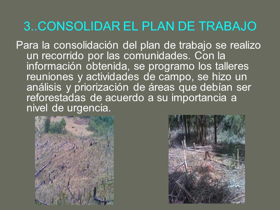 3..CONSOLIDAR EL PLAN DE TRABAJO