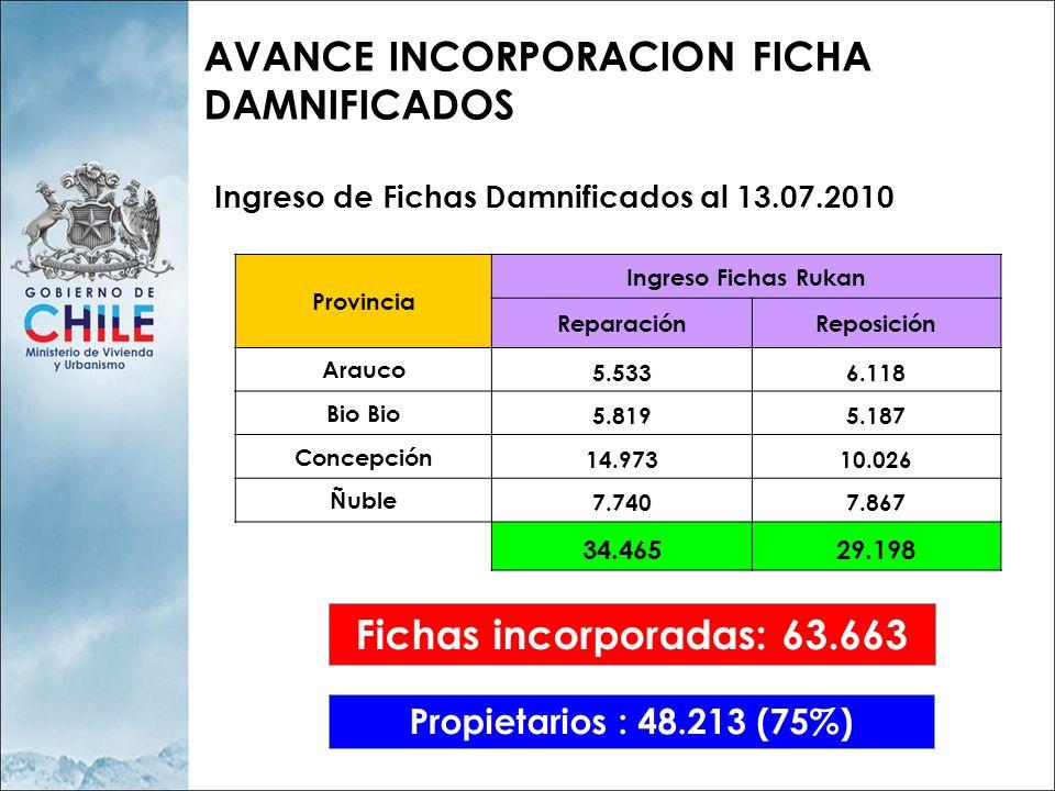 AVANCE INCORPORACION FICHA DAMNIFICADOS