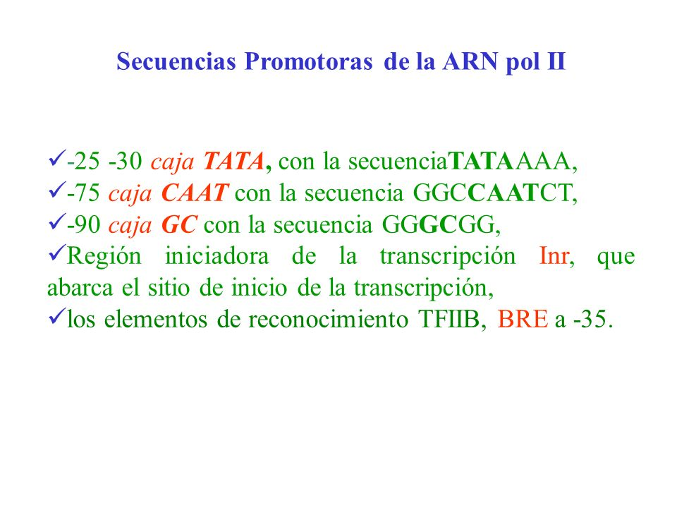 Secuencias Promotoras de la ARN pol II