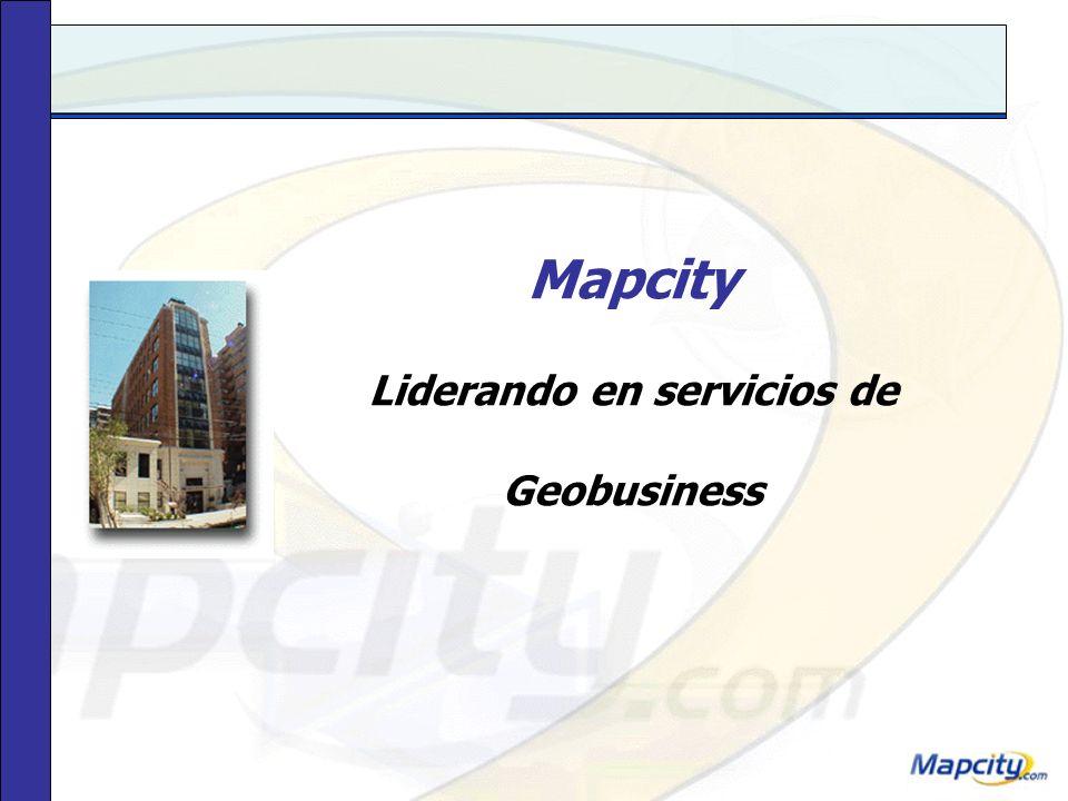 Liderando en servicios de Geobusiness