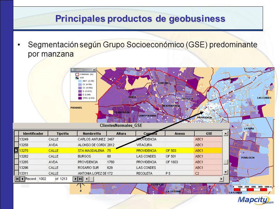 Principales productos de geobusiness