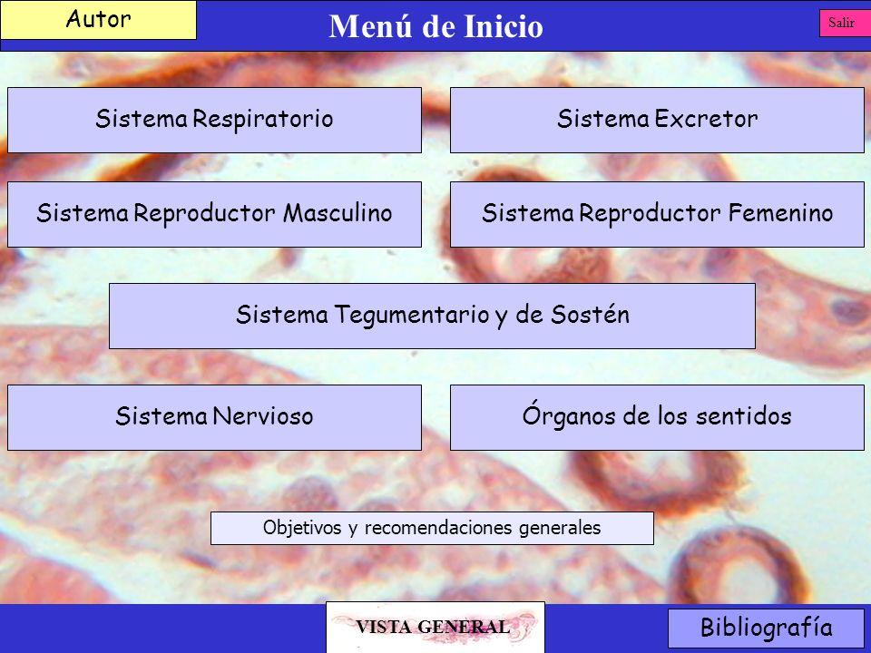 Menú de Inicio Autor Sistema Respiratorio Sistema Excretor