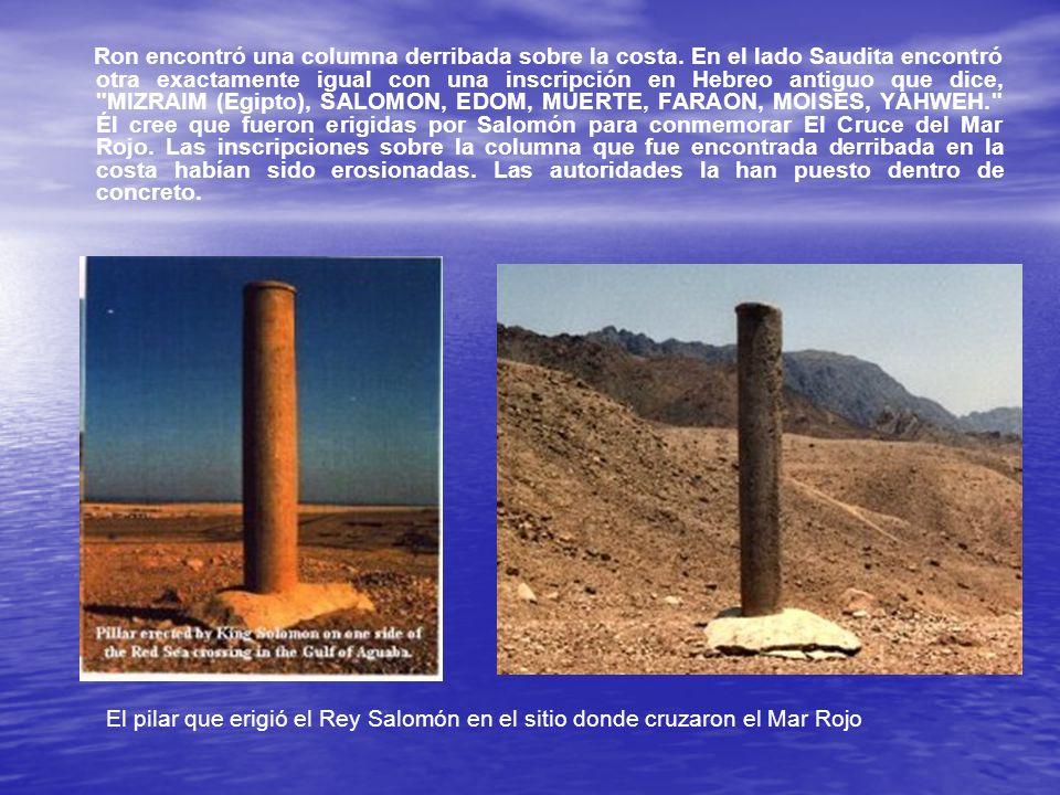 Ron encontró una columna derribada sobre la costa