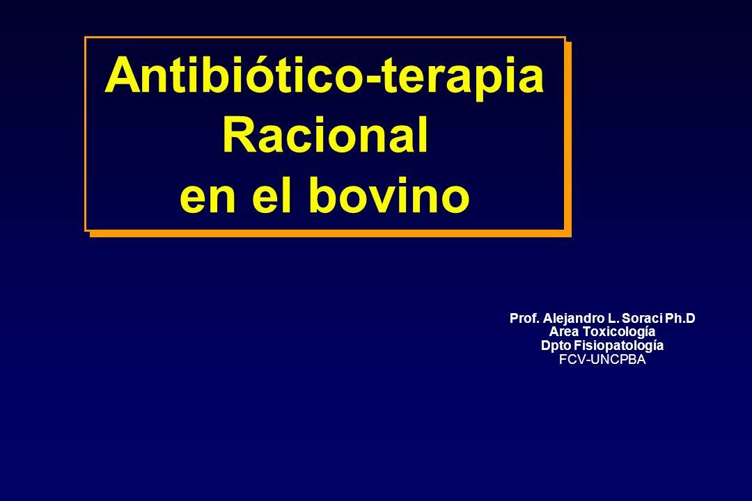 Antibiótico-terapia Racional en el bovino