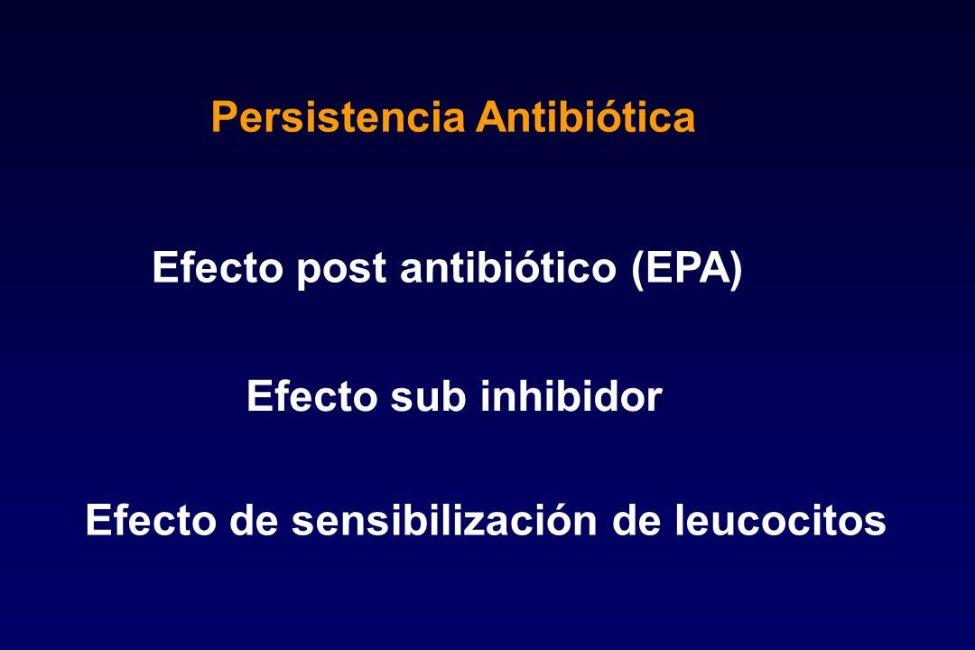 Persistencia Antibiótica