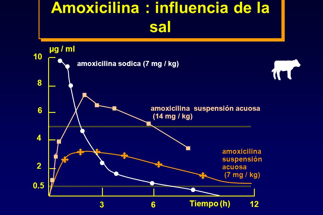 Amoxicilina : influencia de la sal