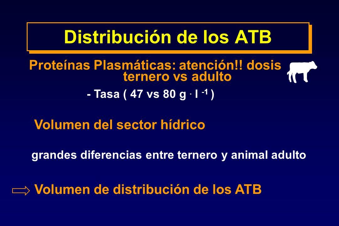 Distribución de los ATB