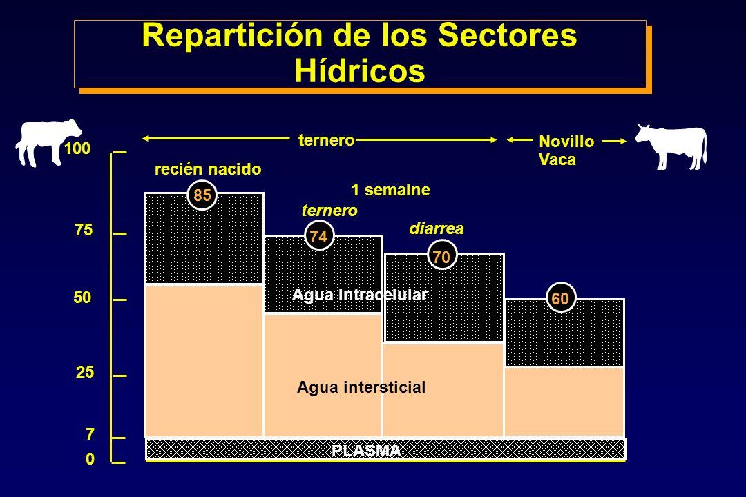 Repartición de los Sectores Hídricos