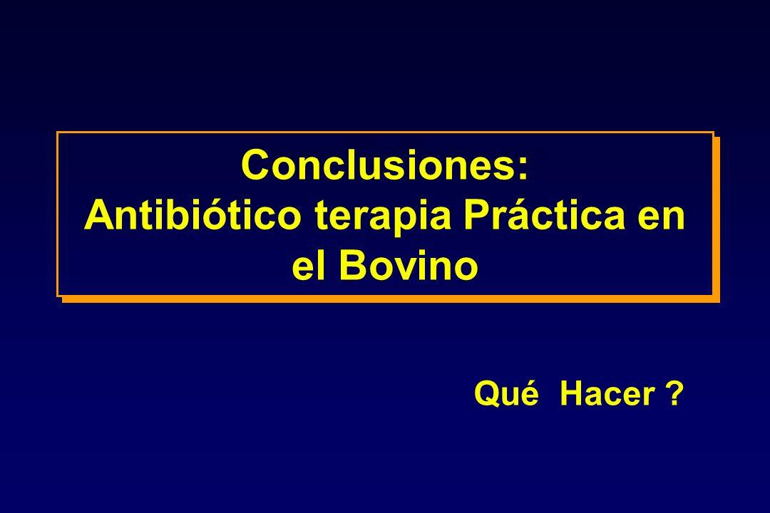 Conclusiones: Antibiótico terapia Práctica en el Bovino