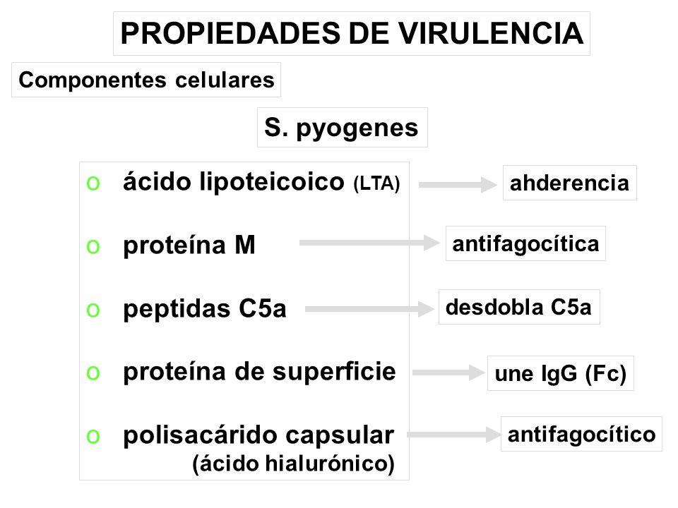 PROPIEDADES DE VIRULENCIA