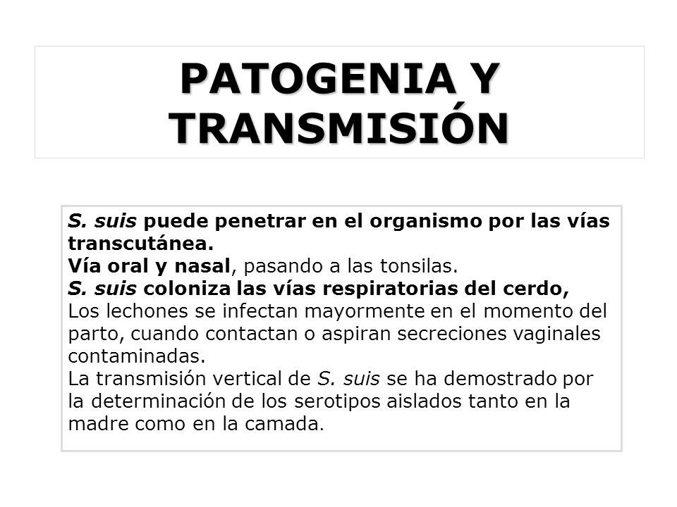 PATOGENIA Y TRANSMISIÓN