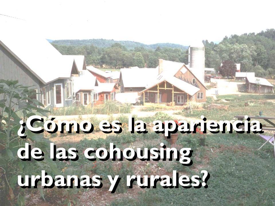 ¿Cómo es la apariencia de las cohousing urbanas y rurales