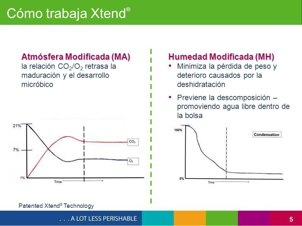 Cómo trabaja Xtend® Atmósfera Modificada (MA) Humedad Modificada (MH)