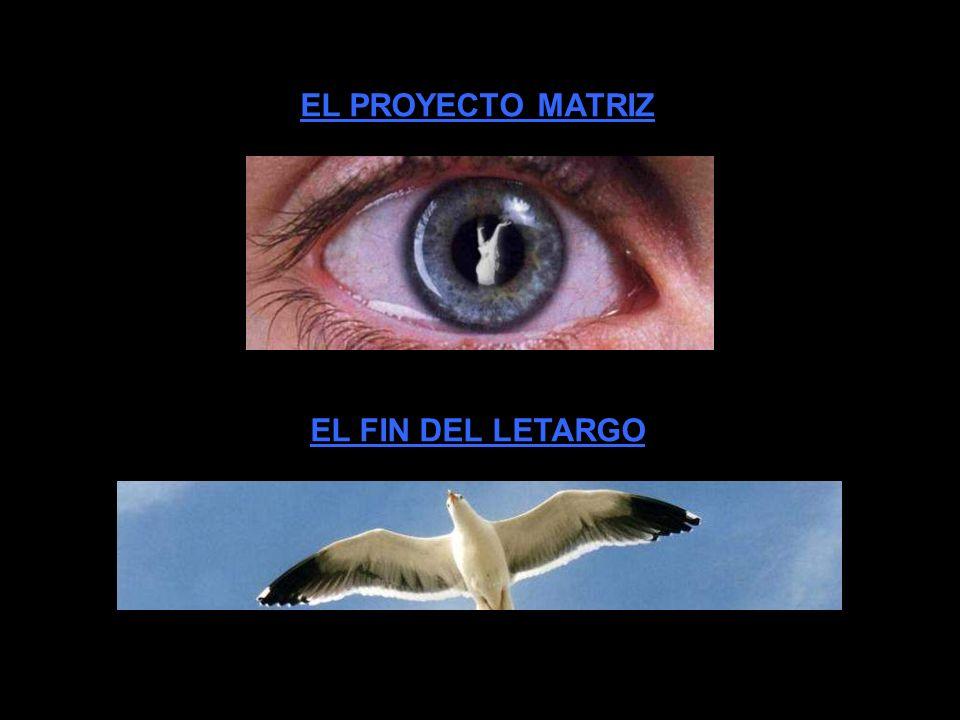 EL PROYECTO MATRIZ EL FIN DEL LETARGO