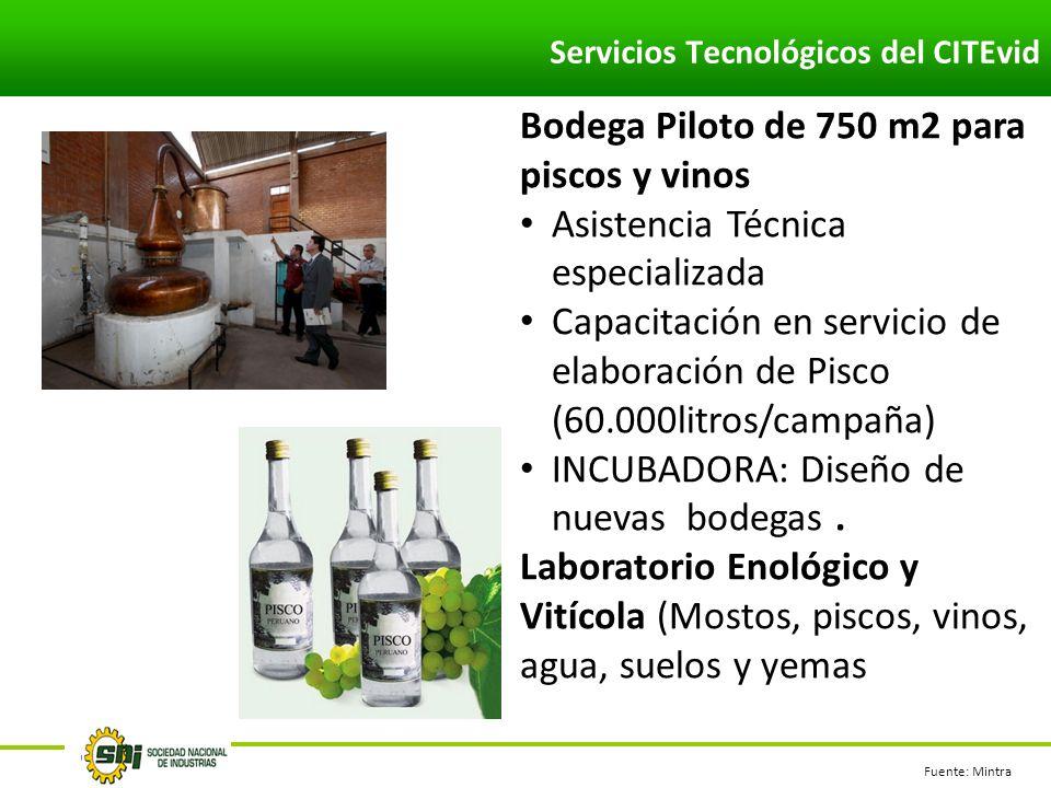 Servicios Tecnológicos del CITEvid