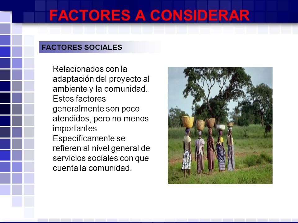 FACTORES A CONSIDERAR FACTORES SOCIALES.