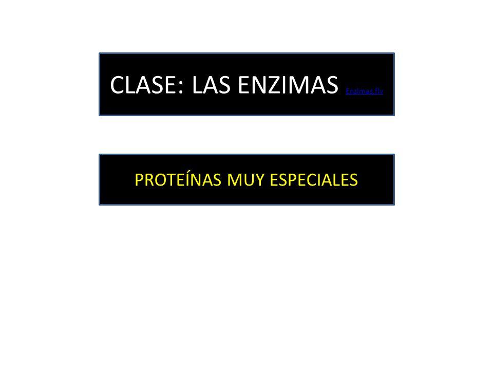 CLASE: LAS ENZIMAS Enzimas.flv
