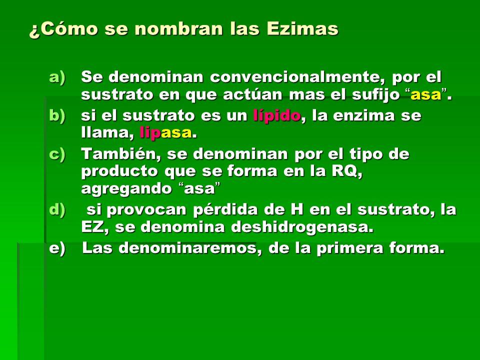 ¿Cómo se nombran las Ezimas