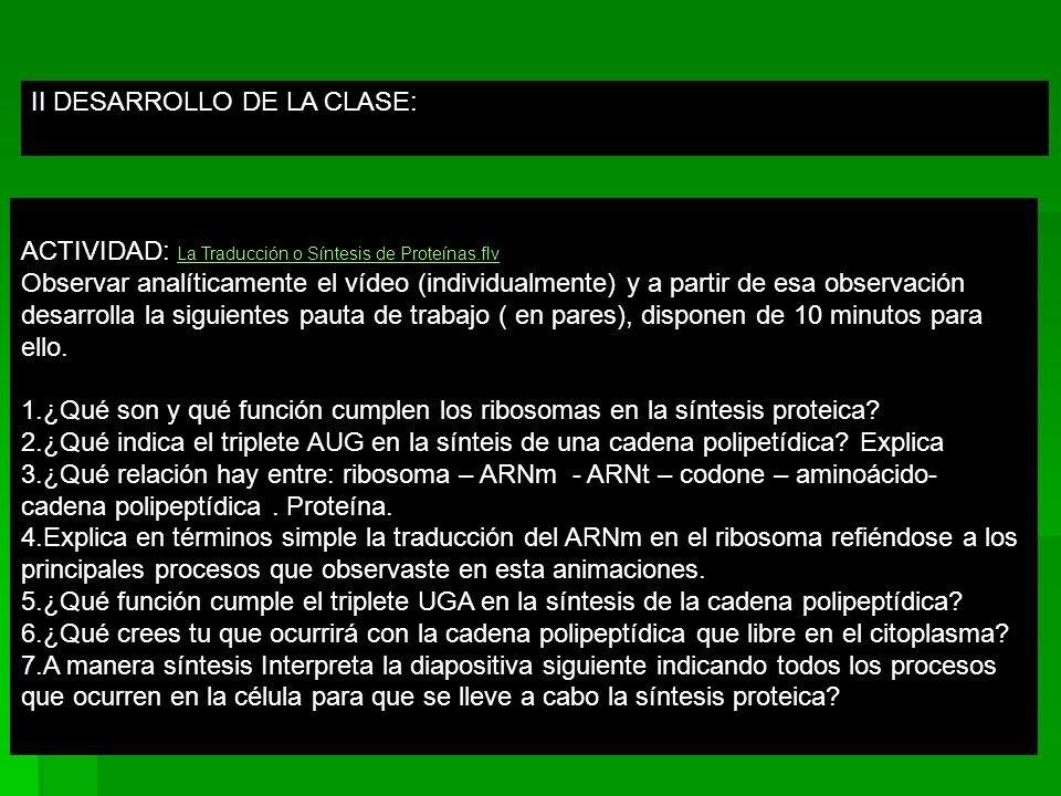 II DESARROLLO DE LA CLASE: