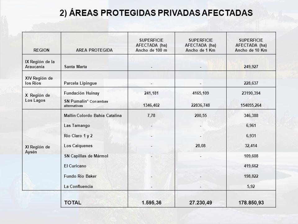 2) ÁREAS PROTEGIDAS PRIVADAS AFECTADAS