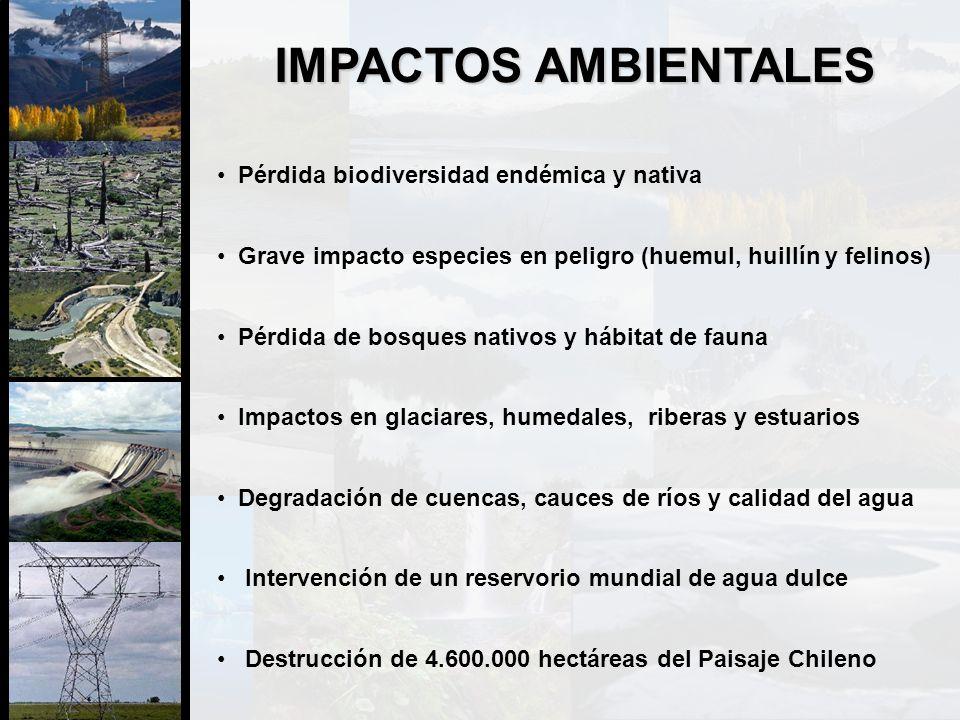 IMPACTOS AMBIENTALES Pérdida biodiversidad endémica y nativa