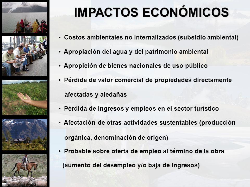 IMPACTOS ECONÓMICOS Apropiación del agua y del patrimonio ambiental