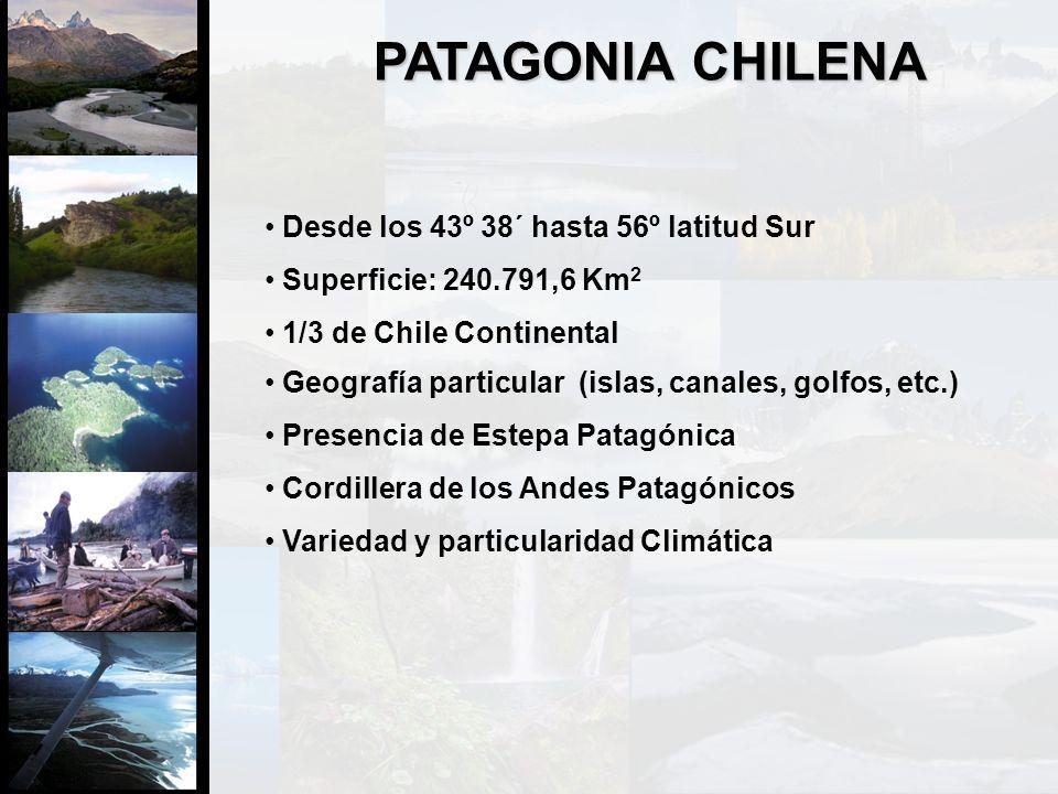 PATAGONIA CHILENA Desde los 43º 38´ hasta 56º latitud Sur