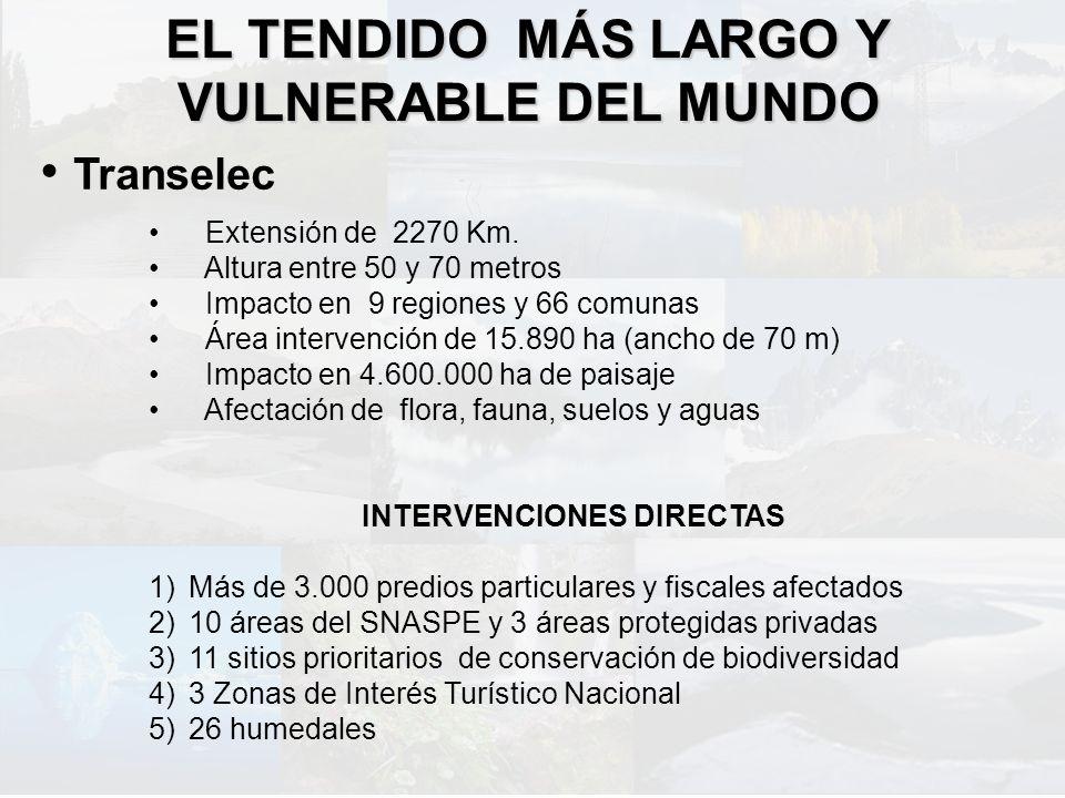EL TENDIDO MÁS LARGO Y VULNERABLE DEL MUNDO