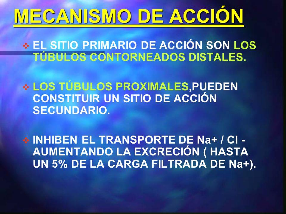 MECANISMO DE ACCIÓN EL SITIO PRIMARIO DE ACCIÓN SON LOS TÚBULOS CONTORNEADOS DISTALES.