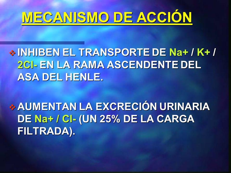 MECANISMO DE ACCIÓN INHIBEN EL TRANSPORTE DE Na+ / K+ / 2Cl- EN LA RAMA ASCENDENTE DEL ASA DEL HENLE.