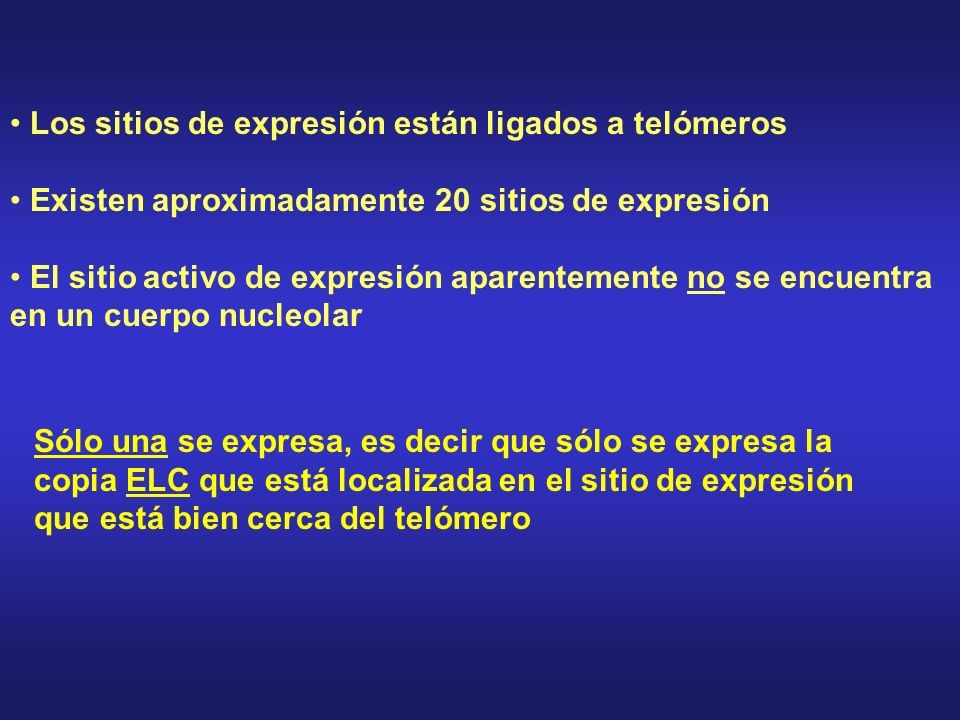 Los sitios de expresión están ligados a telómeros