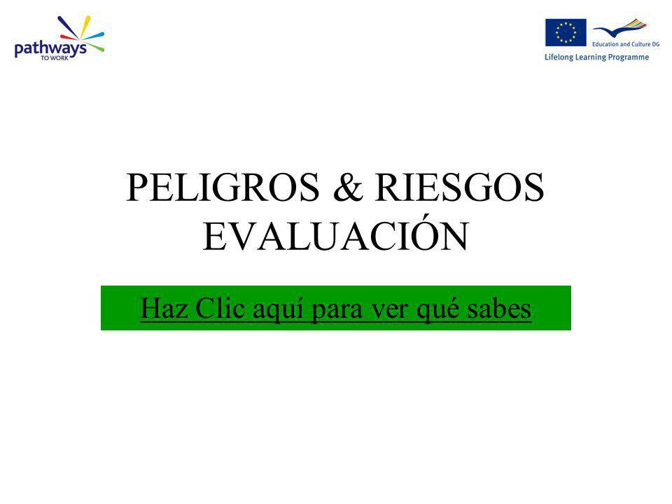 PELIGROS & RIESGOS EVALUACIÓN