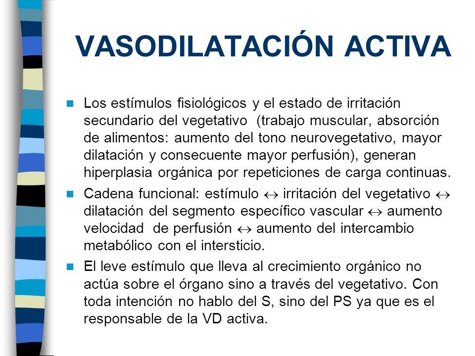 VASODILATACIÓN ACTIVA
