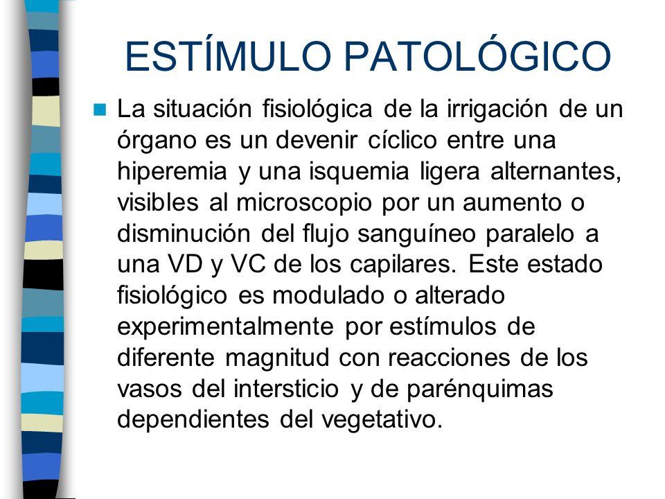 ESTÍMULO PATOLÓGICO
