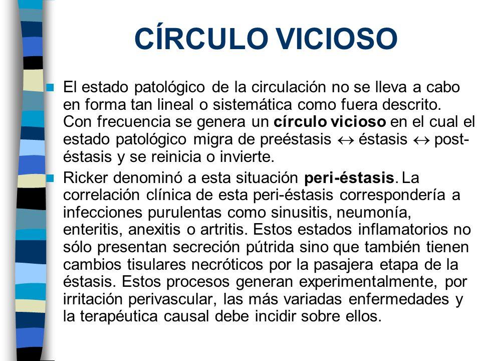 CÍRCULO VICIOSO