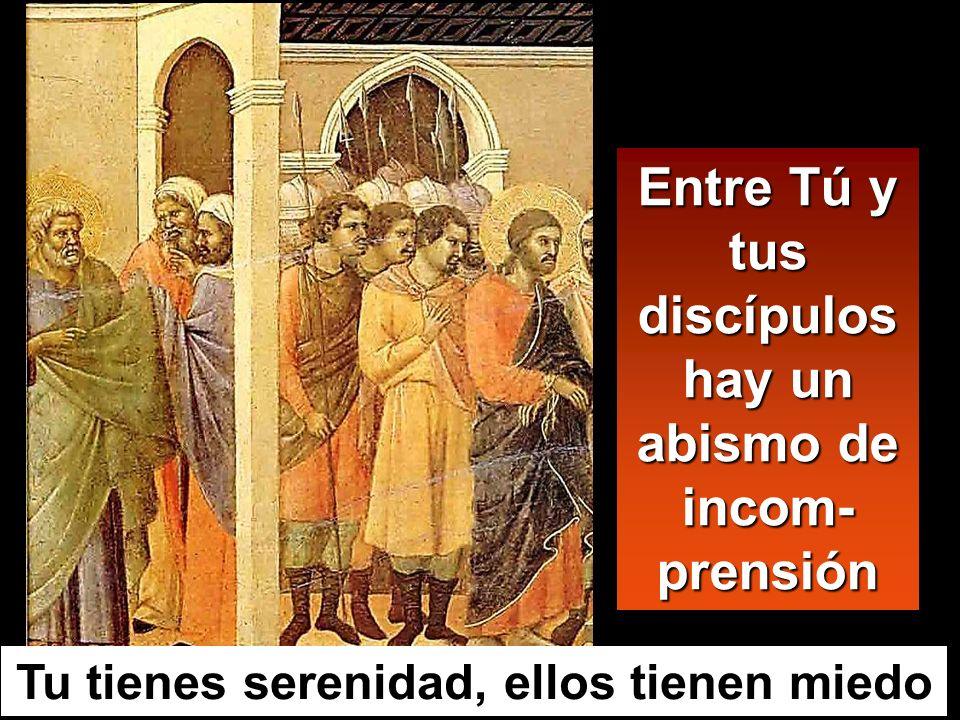 Entre Tú y tus discípulos hay un abismo de incom-prensión