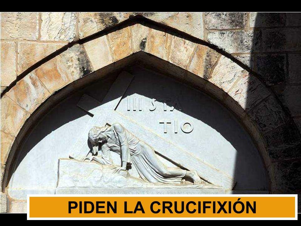 PIDEN LA CRUCIFIXIÓN