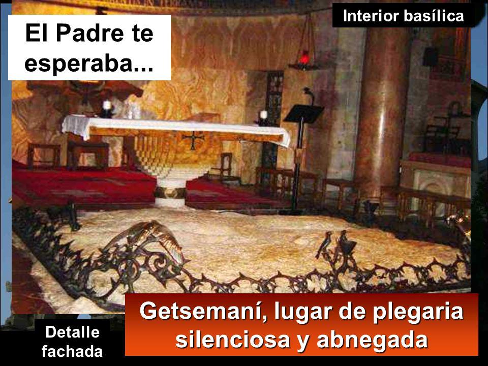 Getsemaní, lugar de plegaria silenciosa y abnegada
