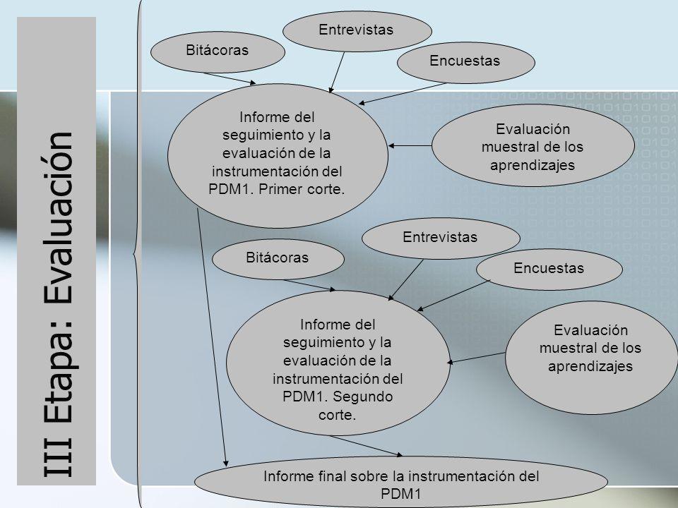 III Etapa: Evaluación Entrevistas Bitácoras Encuestas