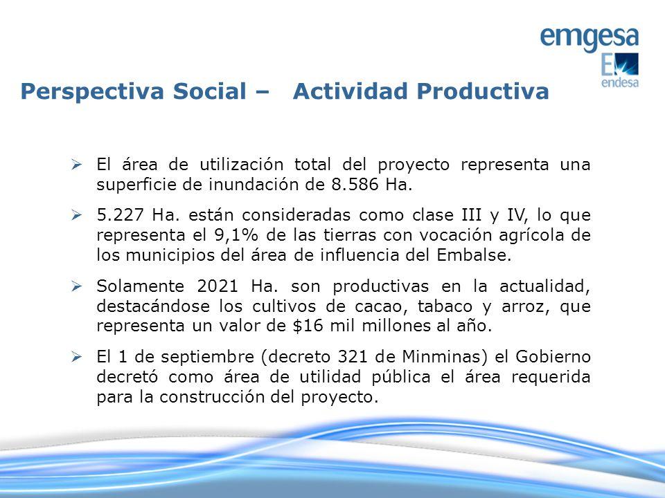 Perspectiva Social – Actividad Productiva