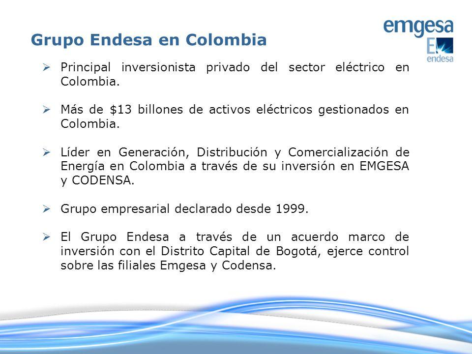 Grupo Endesa en Colombia