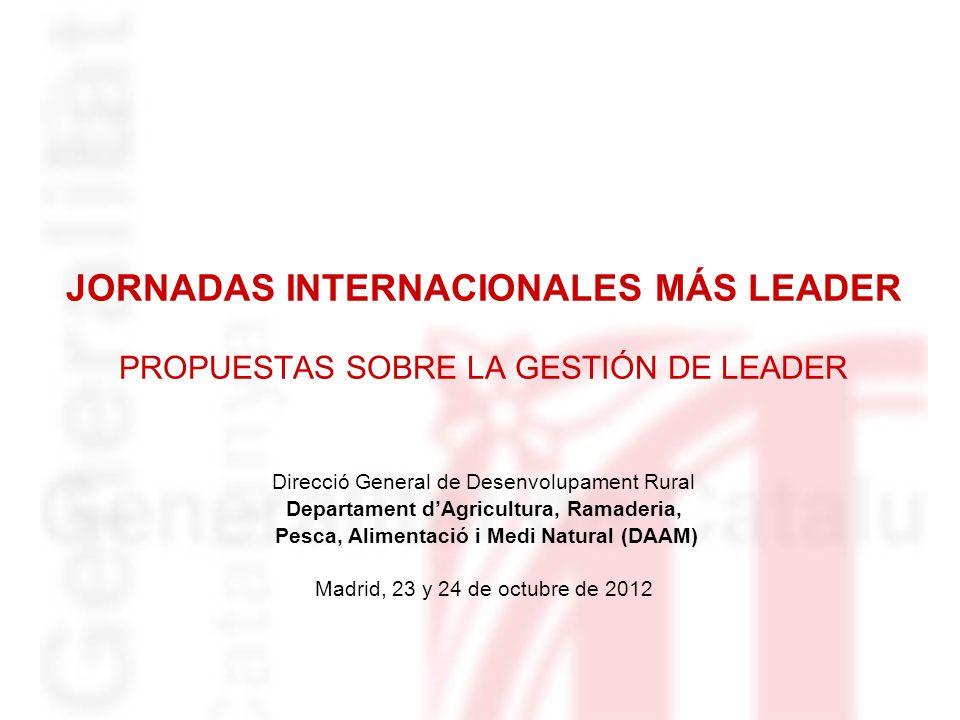JORNADAS INTERNACIONALES MÁS LEADER PROPUESTAS SOBRE LA GESTIÓN DE LEADER